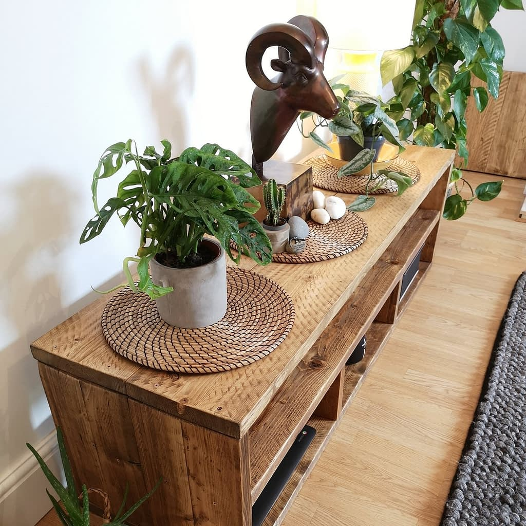 A rustic tv media unit with goat head ornament and plants